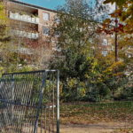 Fussballtor auf dem Bolzplatz Nikolausberger Weg mit Baumbestand